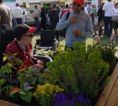 detail-printemps-jardiniers