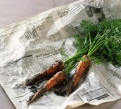 revue de presse carottes